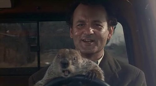"feb1 - 3 wonderful tips for our ""groundhog-days"""